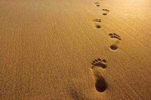 weg-im-sand